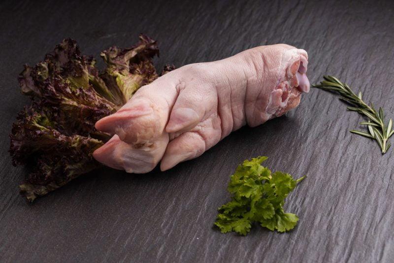 Pork Trotter